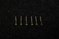 Strat Tremolo Screws